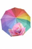 Dáždnik ruža